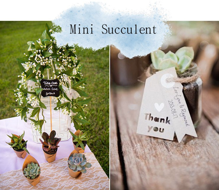 Wedding Favors Ideas 2