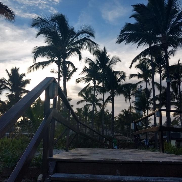 Trip to Ilha de Comandatuba,Bahia