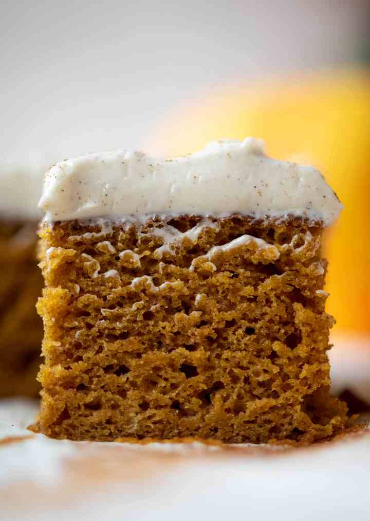 pumpkin-dream-cake-14